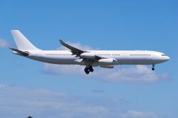 PASSENGERさんが、オークランド空港で撮影したハイ・フライ・マルタ A340-313Xの航空フォト(写真)