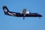 PASSENGERさんが、オークランド空港で撮影したエア・ネルソン DHC-8-311Q Dash 8の航空フォト(写真)