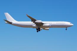 PASSENGERさんが、オークランド空港で撮影したハイ・フライ・マルタ A340-313Xの航空フォト(飛行機 写真・画像)