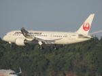 ✈︎十六夜空六✈︎さんが、成田国際空港で撮影した日本航空 787-8 Dreamlinerの航空フォト(写真)