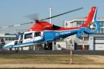 Spot KEIHINさんが、東京ヘリポートで撮影した川崎市消防航空隊 AS365N3 Dauphin 2の航空フォト(写真)