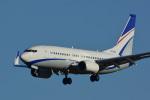 パンダさんが、成田国際空港で撮影した現代自動車 737-7GE(BBJ)の航空フォト(飛行機 写真・画像)
