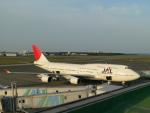 M.Ochiaiさんが、宮崎空港で撮影した日本航空 747-446の航空フォト(写真)