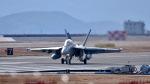 ららぞうさんが、岩国空港で撮影したアメリカ海軍 EA-18G Growlerの航空フォト(写真)