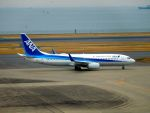 まいけるさんが、羽田空港で撮影した全日空 737-881の航空フォト(写真)