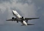 函空さんが、函館空港で撮影した全日空 737-881の航空フォト(写真)