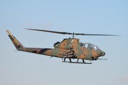 350JMさんが、習志野演習場で撮影した陸上自衛隊 AH-1Sの航空フォト(飛行機 写真・画像)