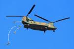 szkkjさんが、習志野演習場で撮影した陸上自衛隊 CH-47JAの航空フォト(飛行機 写真・画像)