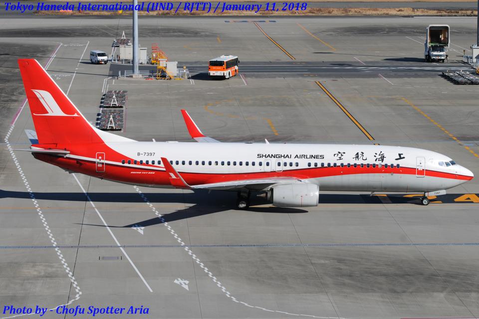 Chofu Spotter Ariaさんの上海航空 Boeing 737-800 (B-7397) 航空フォト