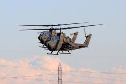 szkkjさんが、習志野演習場で撮影した陸上自衛隊 AH-1Sの航空フォト(飛行機 写真・画像)