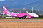 いんちょーさんが、松山空港で撮影したピーチ A320-214の航空フォト(写真)