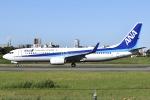 眠たいさんが、伊丹空港で撮影した全日空 737-881の航空フォト(写真)