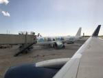 U.Tamadaさんが、ダニエル・K・イノウエ国際空港で撮影したヴァージン・アメリカ A321-253Nの航空フォト(写真)