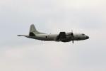 もぐ3さんが、那覇空港で撮影した海上自衛隊 P-3Cの航空フォト(写真)