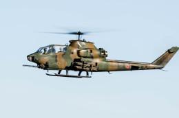 NCT310さんが、習志野演習場で撮影した陸上自衛隊 AH-1Sの航空フォト(飛行機 写真・画像)
