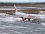 新潟空港 - Niigata Airport [KIJ/RJSN]で撮影されたマリンド・エア - Malindo Airways [OD/MXD]の航空機写真