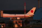 TRdenさんが、新千歳空港で撮影した航空自衛隊 747-47Cの航空フォト(写真)