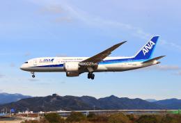 KCZfunさんが、高知空港で撮影した全日空 787-8 Dreamlinerの航空フォト(飛行機 写真・画像)