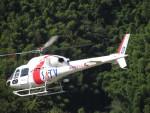kamonhasiさんが、静岡ヘリポートで撮影した東邦航空 AS355Nの航空フォト(写真)