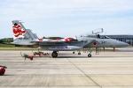 Ariesさんが、那覇空港で撮影した航空自衛隊 F-15J Eagleの航空フォト(写真)