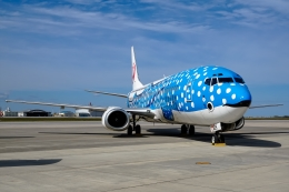 Ariesさんが、那覇空港で撮影した日本トランスオーシャン航空 737-4Q3の航空フォト(写真)