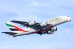 ぽっぽさんが、シドニー国際空港で撮影したエミレーツ航空 A380-861の航空フォト(写真)