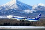 モモさんが、中標津空港で撮影した全日空 737-881の航空フォト(写真)