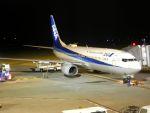 まいけるさんが、神戸空港で撮影した全日空 737-881の航空フォト(写真)