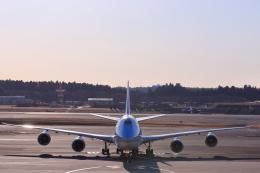 おっしーさんが、成田国際空港で撮影した大韓航空 747-8B5の航空フォト(飛行機 写真・画像)
