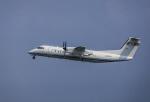 HND_fanさんが、羽田空港で撮影した国土交通省 航空局 DHC-8-315Q Dash 8の航空フォト(写真)