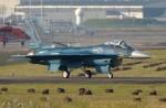 ハミングバードさんが、名古屋飛行場で撮影した航空自衛隊 F-2Aの航空フォト(写真)