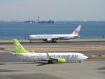 F.KAITOさんが、羽田空港で撮影したソラシド エア 737-86Nの航空フォト(写真)