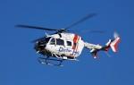 ハミングバードさんが、名古屋飛行場で撮影したセントラルヘリコプターサービス BK117C-2の航空フォト(写真)