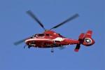 ハミングバードさんが、名古屋飛行場で撮影した名古屋市消防航空隊 AS365N3 Dauphin 2の航空フォト(写真)