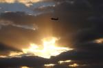 goodskierさんが、広島空港で撮影した全日空 A321-211の航空フォト(写真)