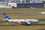 senyoさんが、羽田空港で撮影した日本エアシステム A300B2K-3Cの航空フォト(写真)