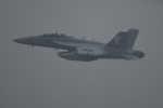 パラノイアさんが、厚木飛行場で撮影したアメリカ海軍 EA-18G Growlerの航空フォト(写真)