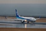 YZR_303さんが、中部国際空港で撮影した全日空 737-881の航空フォト(写真)