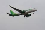 BritLuvさんが、福岡空港で撮影したシティリンク A320-251Nの航空フォト(写真)