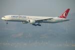ceskykrumlovさんが、香港国際空港で撮影したターキッシュ・エアラインズ 777-3F2/ERの航空フォト(写真)