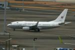 シュウさんが、羽田空港で撮影したオーストラリア空軍 737-7DT BBJの航空フォト(写真)