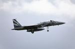 TAKAHIDEさんが、小松空港で撮影した航空自衛隊 F-15J Eagleの航空フォト(写真)