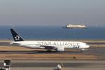 おっしーさんが、羽田空港で撮影した全日空 777-281の航空フォト(写真)