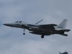 S51KAさんが、那覇空港で撮影した航空自衛隊 F-15J Eagleの航空フォト(写真)