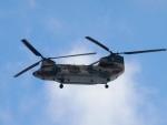 51ANさんが、那覇空港で撮影した航空自衛隊 CH-47J/LRの航空フォト(写真)