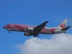 51ANさんが、那覇空港で撮影した日本トランスオーシャン航空 737-446の航空フォト(写真)