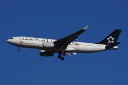 ・8・さんが、成田国際空港で撮影した中国国際航空 A330-243の航空フォト(写真)