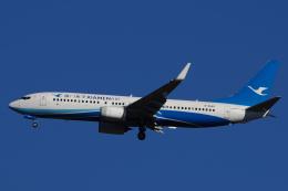 ・8・さんが、成田国際空港で撮影した厦門航空 737-85Cの航空フォト(写真)