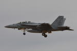 350JMさんが、厚木飛行場で撮影したアメリカ海軍 F/A-18F Super Hornetの航空フォト(写真)