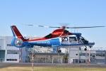 筑波のヘリ撮りさんが、東京ヘリポートで撮影した川崎市消防航空隊 AS365N3 Dauphin 2の航空フォト(写真)